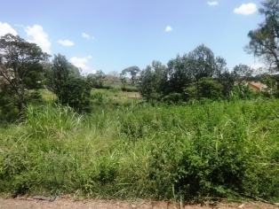 P138:((40*80)) PLOT IN THIKA ROAD,RUIRU