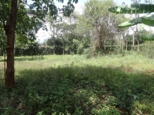 P137:Commercial plot(1 acre) in Thika road with a mansionette.