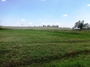 18 ACRES FOR SALE IN THIKA P128