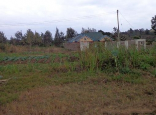 P152:Ngoigwa 50x100 Prime plot for sale