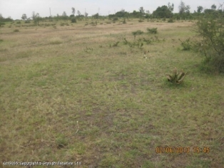 2.5 ACRES FOR SALE RIGHT ON MSA ROAD P120